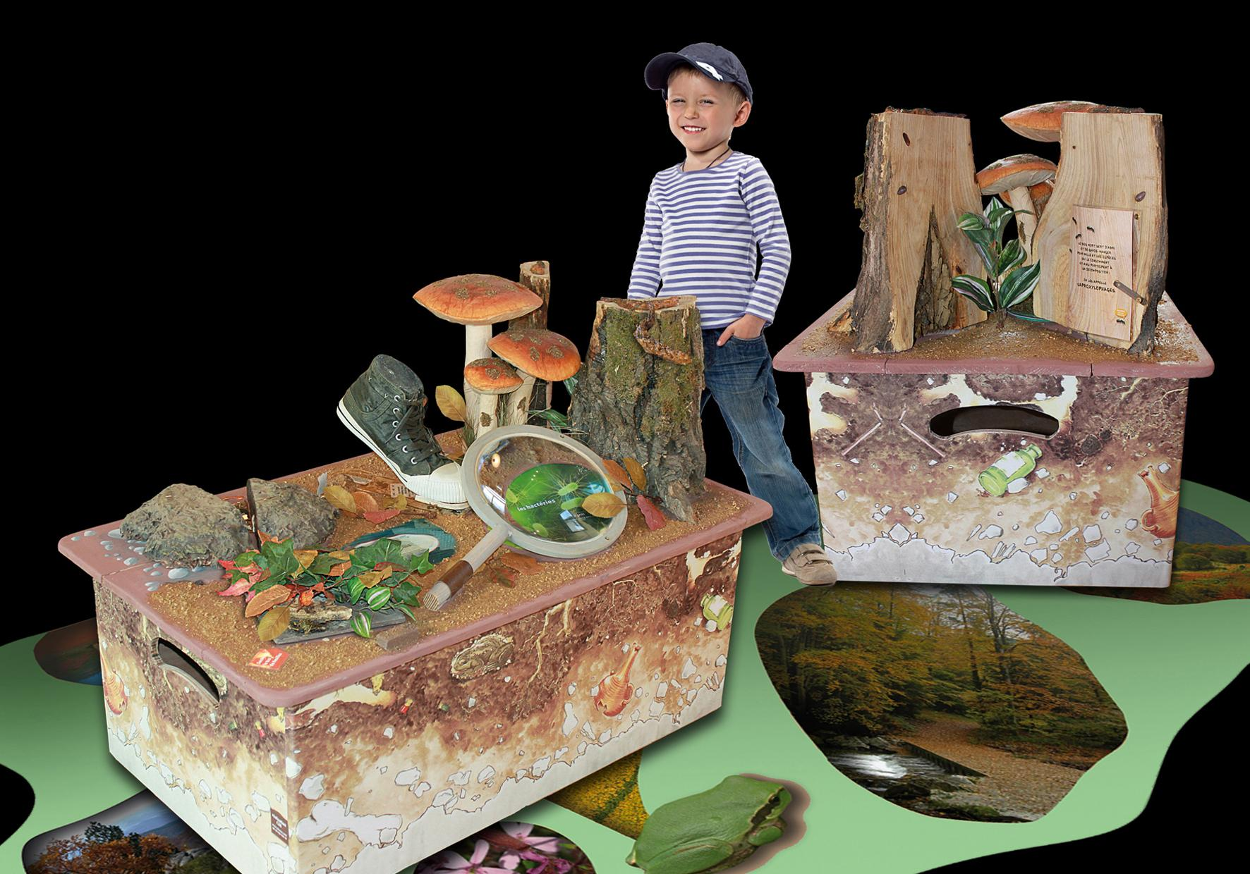 Exposition itinérante pédagogique sur la biodiversité en forêt CPIE